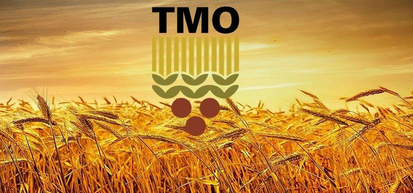 TMO 2020/21 ALIM DÖNEMİ KABUKLU FINDIK MÜDAHALE ALIM FİYATLARI